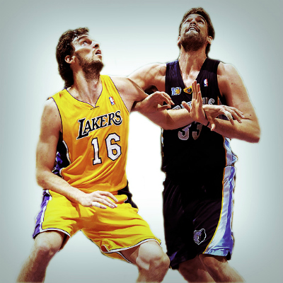 Fighting Gasol Brothers Art